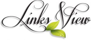 Links View Logo
